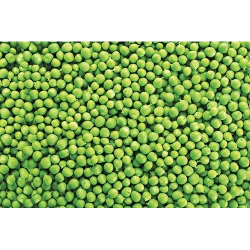Kitchen Splashback 2440x610mm Picture: Give Peas A Chance