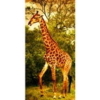 Designer Shower Wall Panel 2440 x 1220mm Picture: Serengeti Giraffes