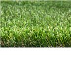 Namgrass Eclipse 2M x1M